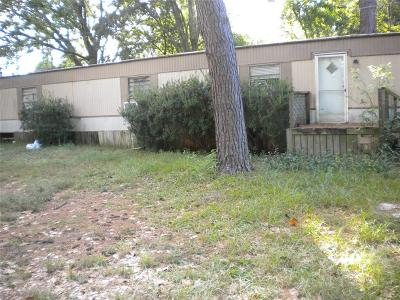Tomball Single Family Home For Sale: 21703 W Champagne Circle