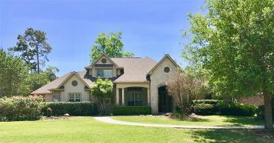 Conroe Single Family Home For Sale: 13201 Autumn Ash Drive