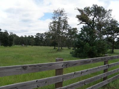 Magnolia Farm & Ranch For Sale: 16911 Butera