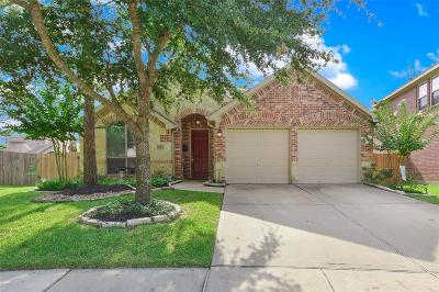 Cinco Ranch Single Family Home For Sale: 26411 Bright Sky Court