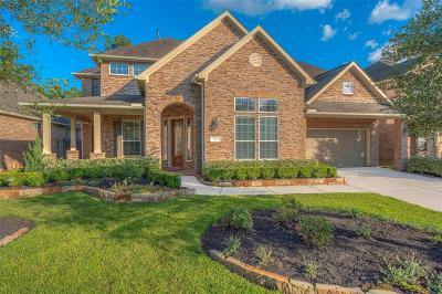 The Woodlands Single Family Home For Sale: 130 S Arrow Canyon Circle