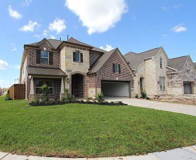 Webster Single Family Home For Sale: 640 Garcitas Court