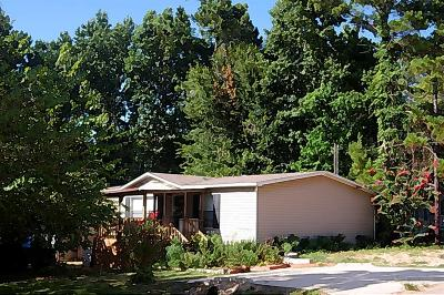 Montgomery Single Family Home For Sale: 16970 W Lynbrook