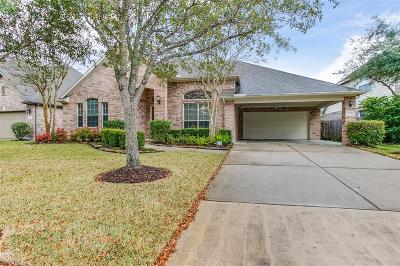Houston Single Family Home For Sale: 14530 N Castle Cove Lane