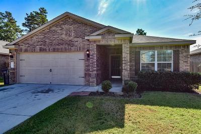Magnolia Single Family Home For Sale: 31022 E Lost Creek Boulevard