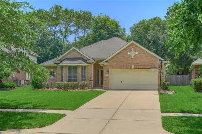 Humble Single Family Home For Sale: 20523 Water Point Trail