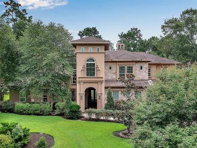 Spring Single Family Home For Sale: 3706 W Benders Landing Boulevard