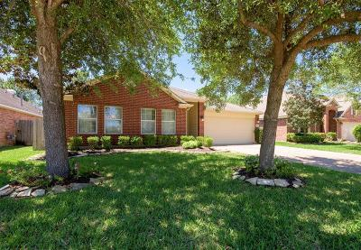 Single Family Home For Sale: 4911 Grand Chateau Lane