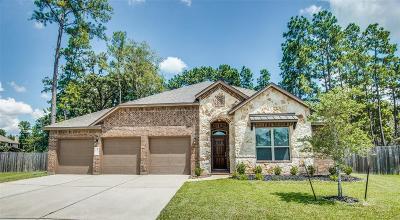 Single Family Home For Sale: 14105 Sun Notch Drive