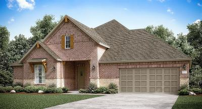 New Caney Single Family Home For Sale: 18864 Collins View Drive