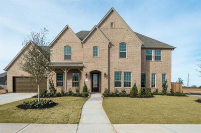 Katy Single Family Home For Sale: 27202 Carlisle