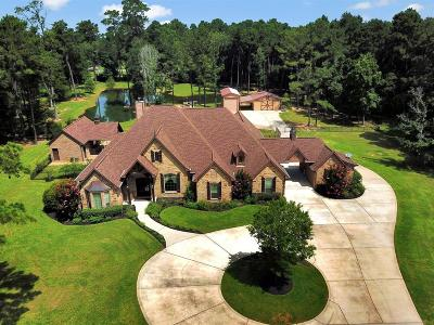 Conroe Single Family Home For Sale: 14904 Old Conroe Road Road