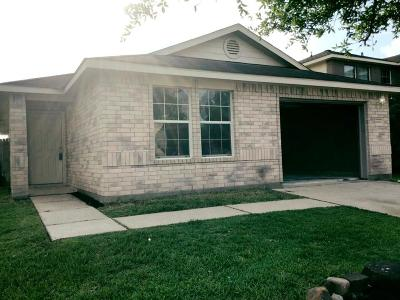 Spring Single Family Home For Sale: 22815 Precious Place