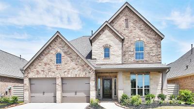 Manvel Single Family Home For Sale: 2361 Olive Forest Lane