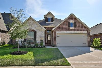 Cypress Single Family Home For Sale: 14819 Cypresswood Springs Lane
