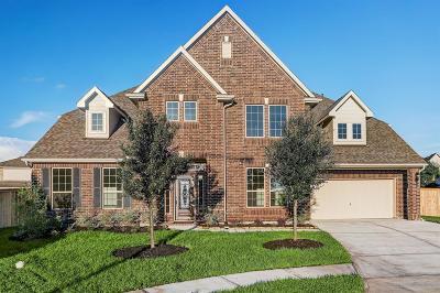 League City Single Family Home For Sale: 4031 Maybrook Lane