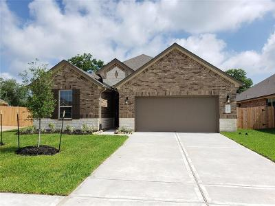 Pearland Single Family Home For Sale: 3711 Lockheed Street