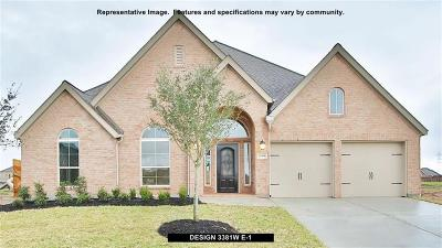 Pearland Single Family Home For Sale: 3207 Iris Trail Lane