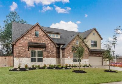 Tomball Single Family Home For Sale: 12411 Fort Isabella