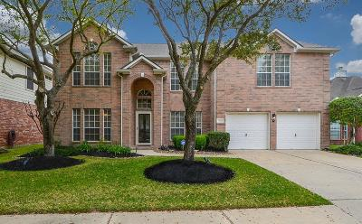 Single Family Home For Sale: 11222 Satin Tail Lane