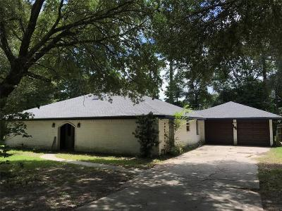 Conroe Single Family Home For Sale: 810 Brook Hollow Drive
