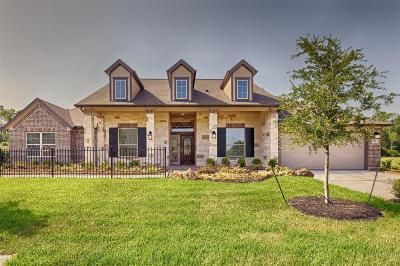 Baytown Single Family Home For Sale: 6919 Vista Ledge Drive