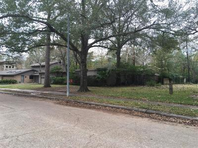 Memorial Single Family Home For Sale: 411 Electra Drive