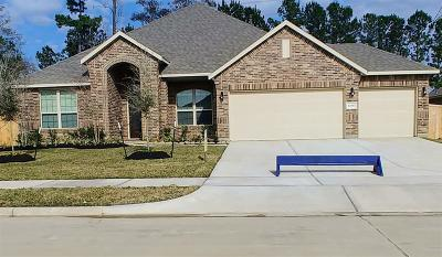 Tomball Single Family Home For Sale: 12602 Fort Isabella Drive