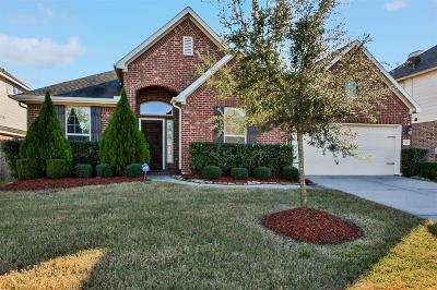 Houston Single Family Home For Sale: 17923 Quiet Loch Lane