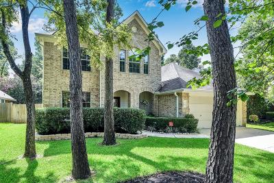 The Woodlands Single Family Home For Sale: 75 N Winterport Circle