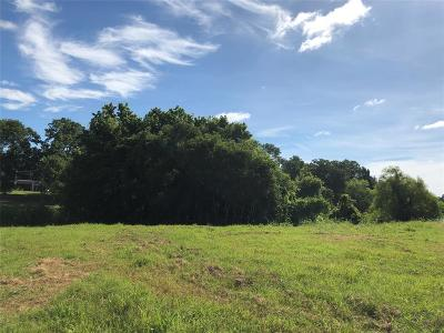 Fulshear Residential Lots & Land For Sale: 30927 Riverlake Road