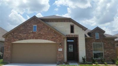Tomball Single Family Home For Sale: 10123 Red Tamarack Lane