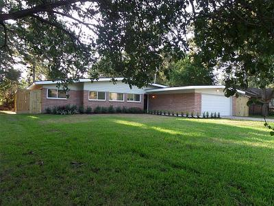 Houston Single Family Home For Sale: 1706 Imperial Crown Drive