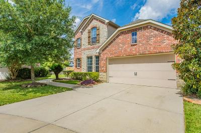 Katy Single Family Home For Sale: 24710 Dockside Terrace Court