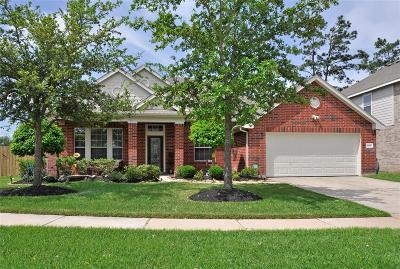 Tomball Single Family Home For Sale: 18403 Sierra Falls Court