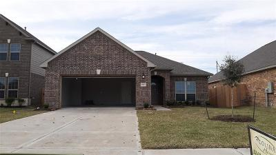 Texas City Single Family Home For Sale: 8813 Explorer Drive