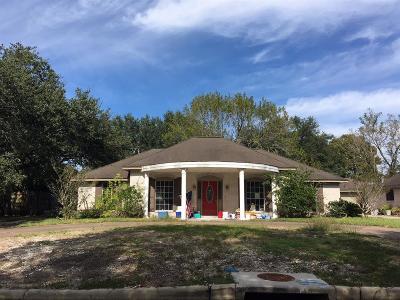 Dickinson Single Family Home For Sale: 4905 E Live Oak Drive
