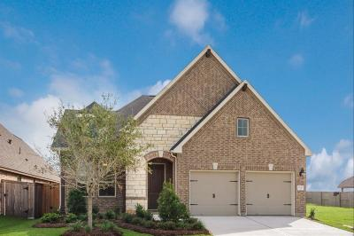 Fulshear Single Family Home For Sale: 2123 Great Egret Bend Bend