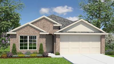 Conroe Single Family Home For Sale: 11510 Castle Nugent