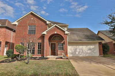 Sugar Land Single Family Home For Sale: 16407 Hidden Gate Court