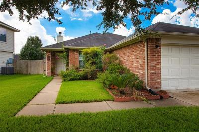 Katy Single Family Home For Sale: 19723 Cannon Fire Drive