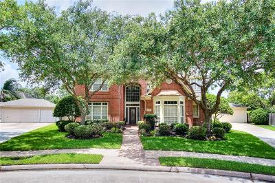 Sugar Land Single Family Home For Sale: 2006 Larimer Point Court