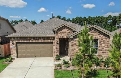 Spring Single Family Home For Sale: 9710 Hazel Fern Court