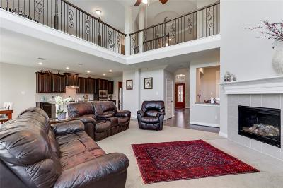 Katy Single Family Home For Sale: 25702 Creek Ledge Drive