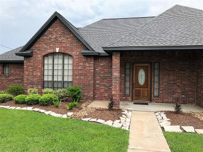 Angleton Single Family Home For Sale: 6119 Bending Bough Drive