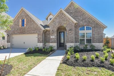 Southern Trails Single Family Home For Sale: 3545 Morning Hill Court