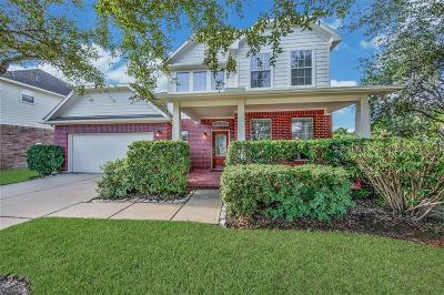 Katy Single Family Home For Sale: 5006 Big Meadow Lane