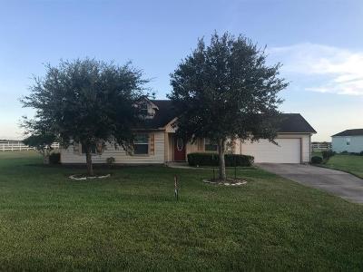 Rosharon Single Family Home For Sale: 17118 Lake Ridge Circle