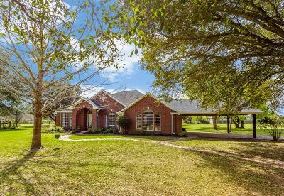 Fulshear Single Family Home For Sale: 32903 Pecan Hill Drive