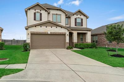 Katy Single Family Home For Sale: 22522 Lavender Knoll Lane